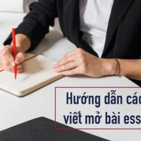 Hình ảnh cách viết mở bài essay 1