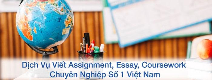 hinh-anh-dich-vu-viet-assignment-essay-3-1